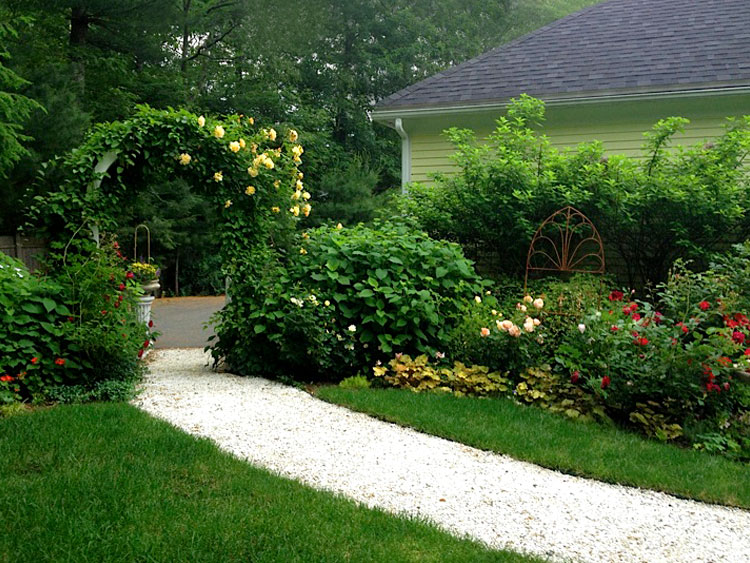 Rose gardens & perennial garden beds and borders