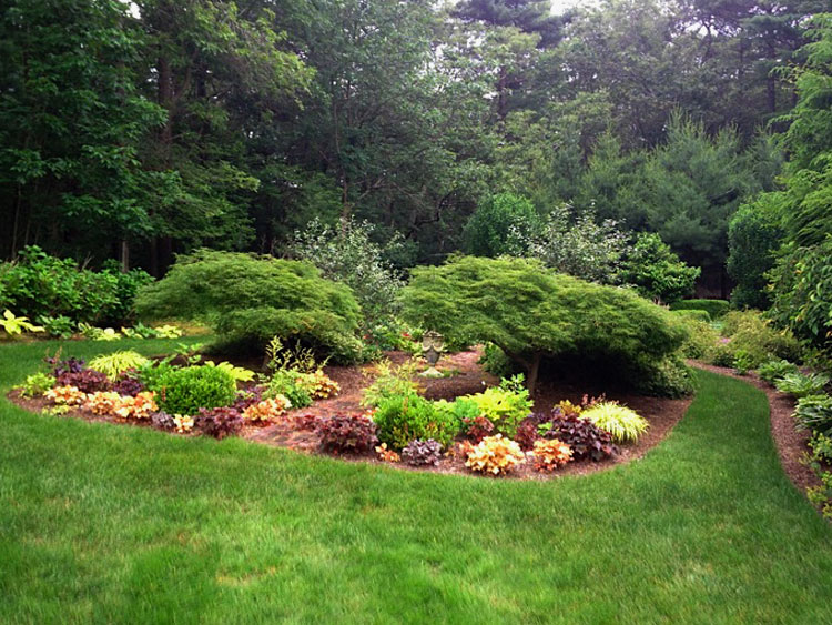 Natural New England perennial gardens
