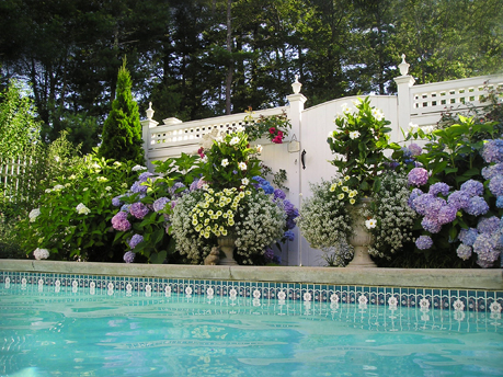 Pool & patio plantscaping & containers