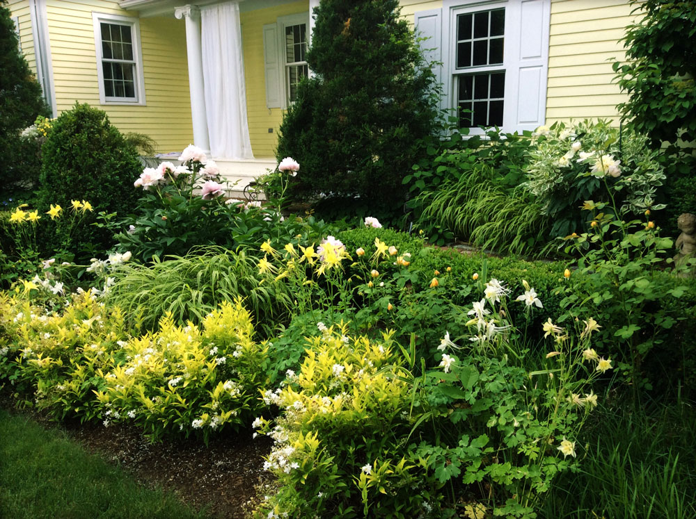 Yellow & white gardens with peony