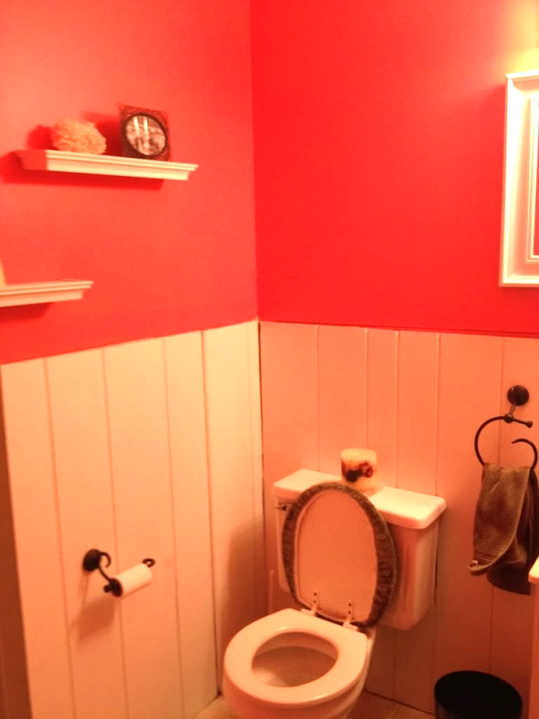 Hld Scope Cleaning Room Design: Powder Room Makeover