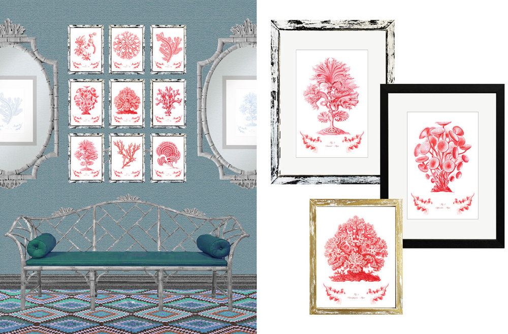 red coral and algaes prints with frame.jpg