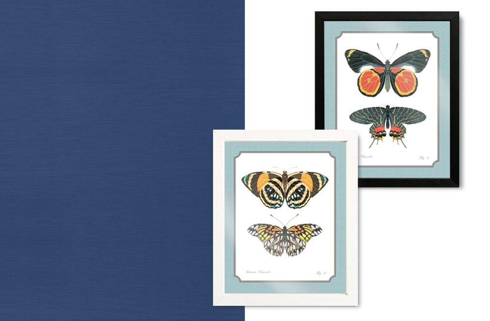 laminas con mariposas - desde €18