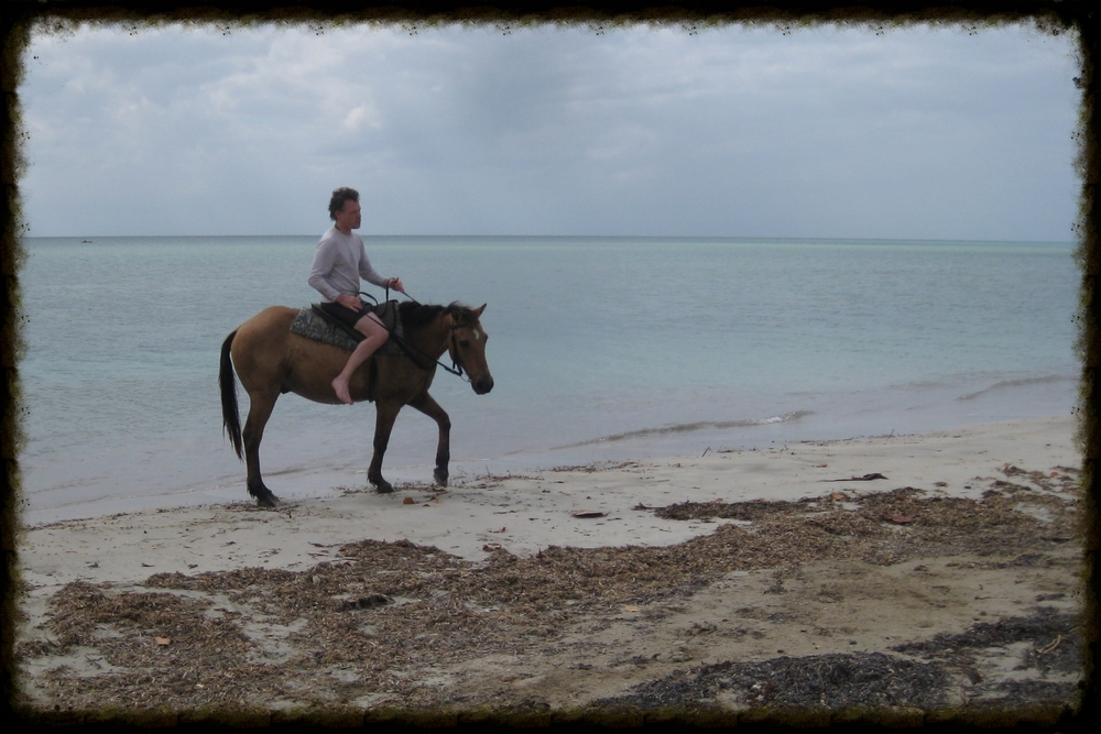 Horseback Rding on the Beach