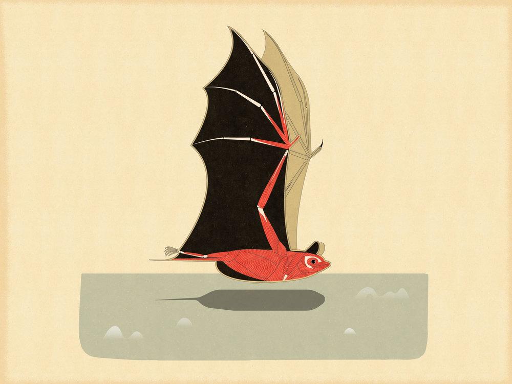 BatMuscle.jpg