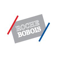 Roche_Bobois alt logo color.png