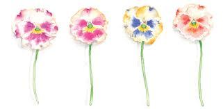 susan_branch_flowers