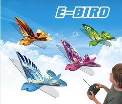 toys_in_Portland_ebird_remote_control