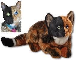 Toys_in_Portland_venus_the_chimera_cat_stuffed_animal