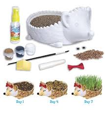 Toys_in_Portland_grow_a_hedgehog
