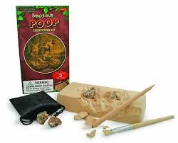 Dinosaur Poop Excavation Kit, Ages 6+ $12.99