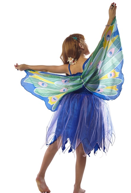Dreamy Dress with Peacock Wings, Size Small $59.99