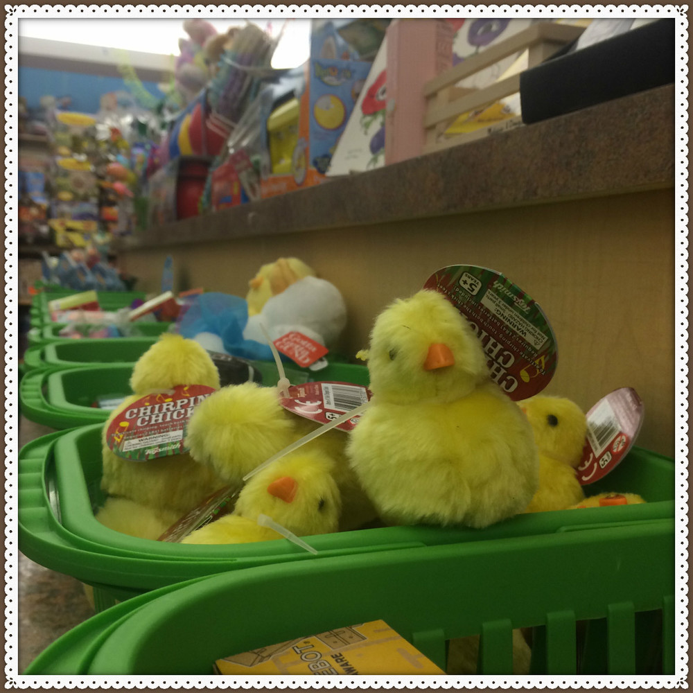 Easter chicks hanging out at the Easter Basket Buffet!