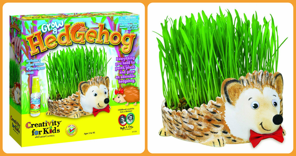 Grow a Hedgehog, Ages 5+ $14.99