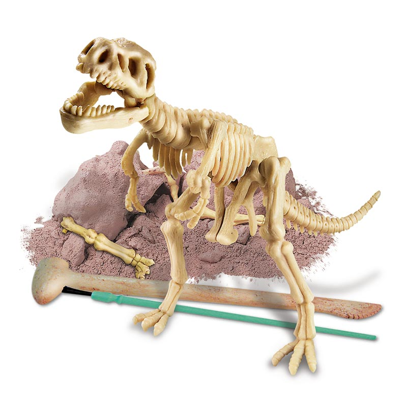 Dig A Dinosaur Skeleton Kit, Ages 8+ $12.99