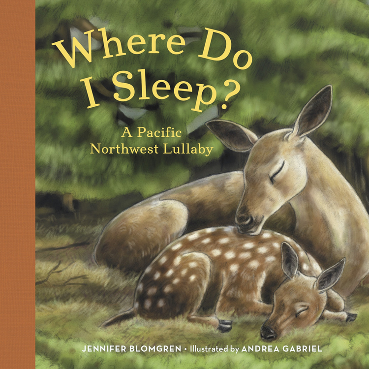 Where Do I Sleep? by Jennifer Blomgren, illustrated by Andrea Gabriel