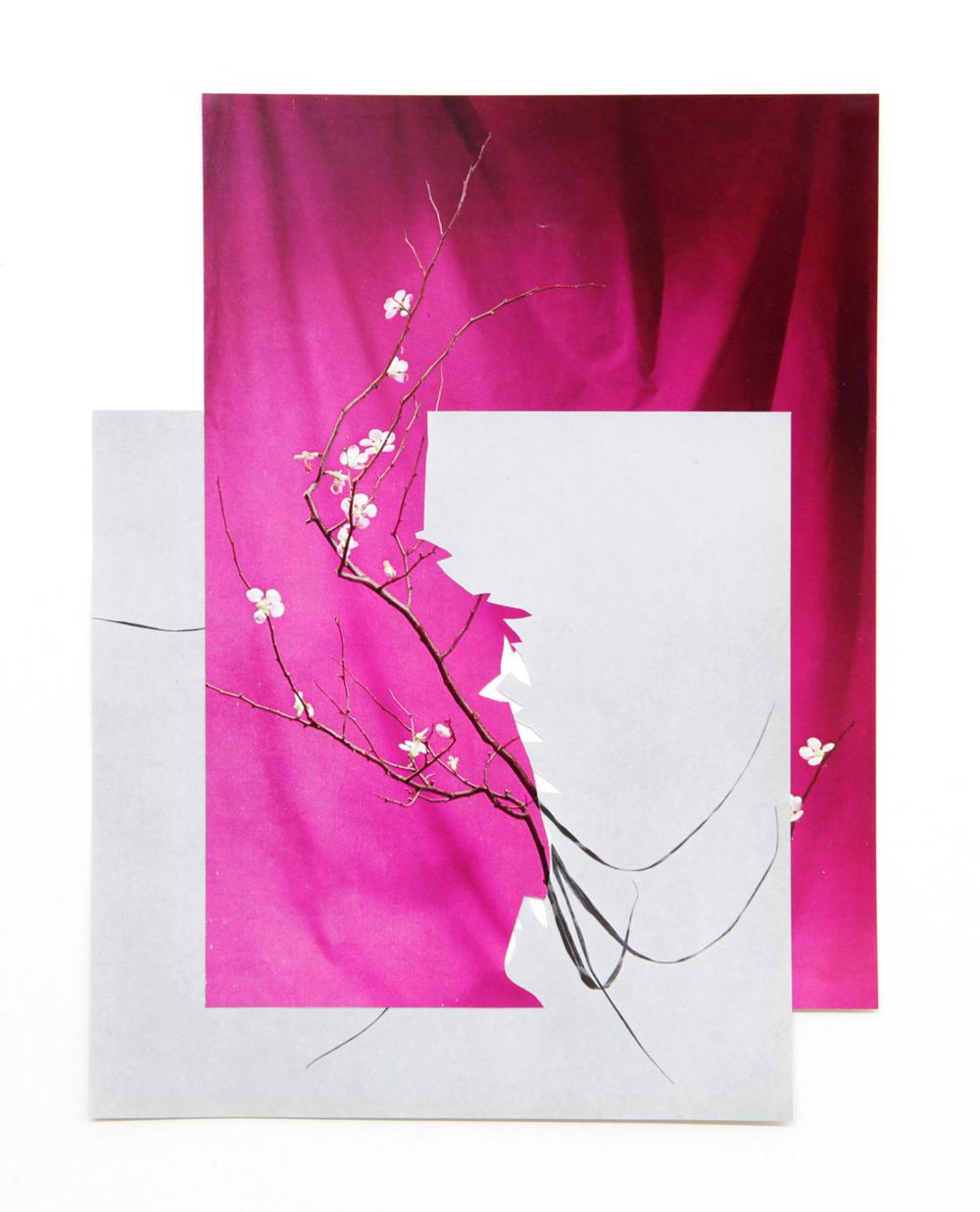 shape/ gilavar, 2014  , paper, glue ,