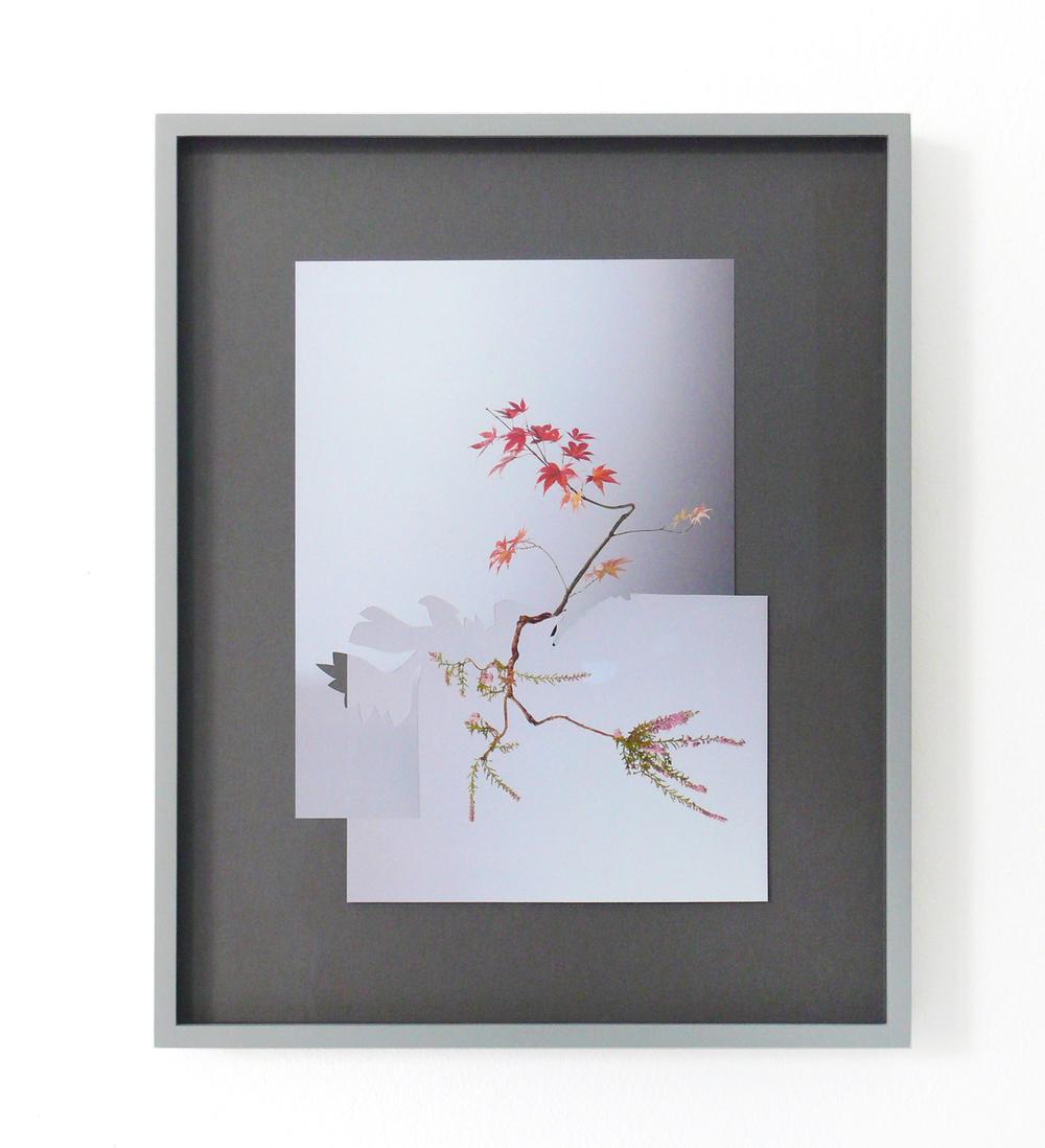 shape/ bayamo, 2014  , paper, glue , 35 x 27cm