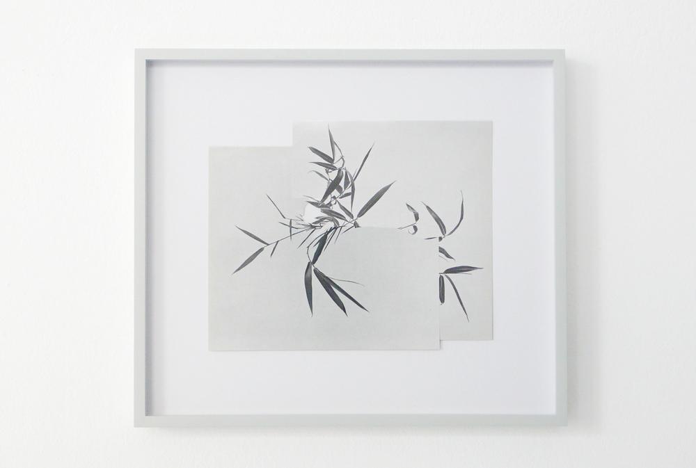 shape/ khazri, 2014  , paper, glue , 26,3 x 30cm