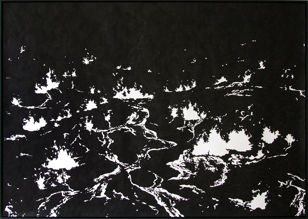ground ll,  2004, ink on paper, 196 x 276cm