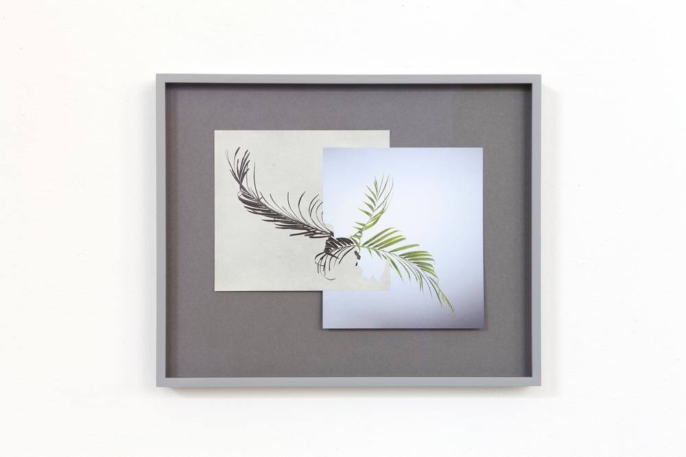 Shape/ pali,  2014, paper, glue, 26,6 x 32,8cm