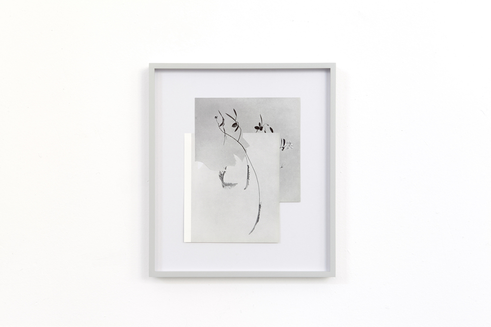 shape/ vardarac, 2014  , paper, glue ,