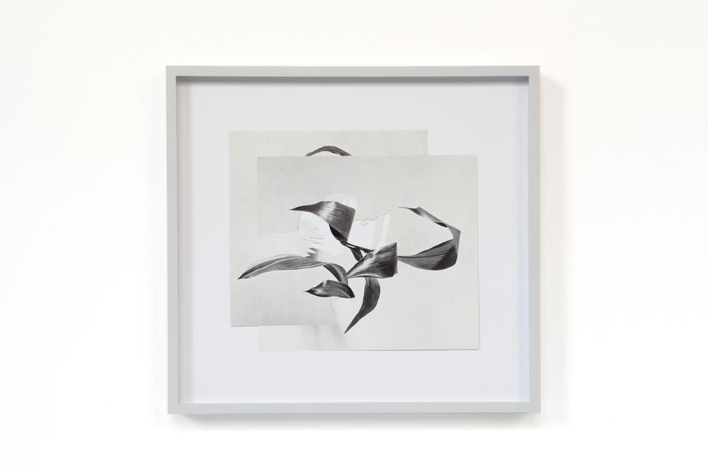 Shape/ caju , 2014, paper, glue, 27 x 29cm