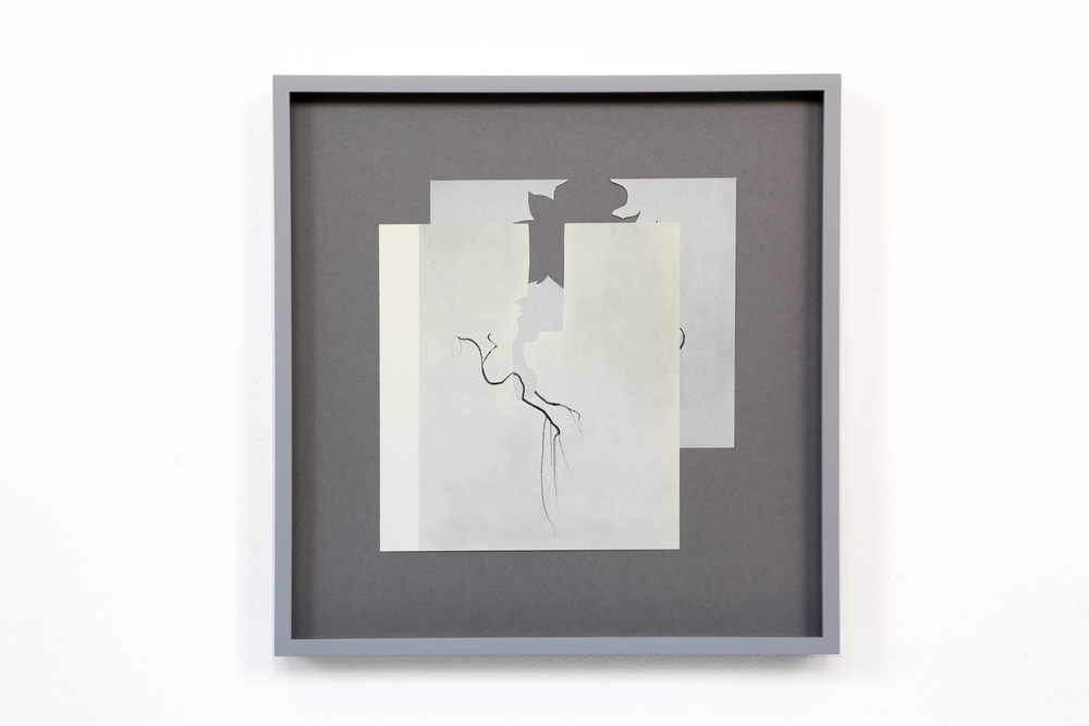 shape/ taku, 2014  , paper, glue , 27,7 x 26,7cm