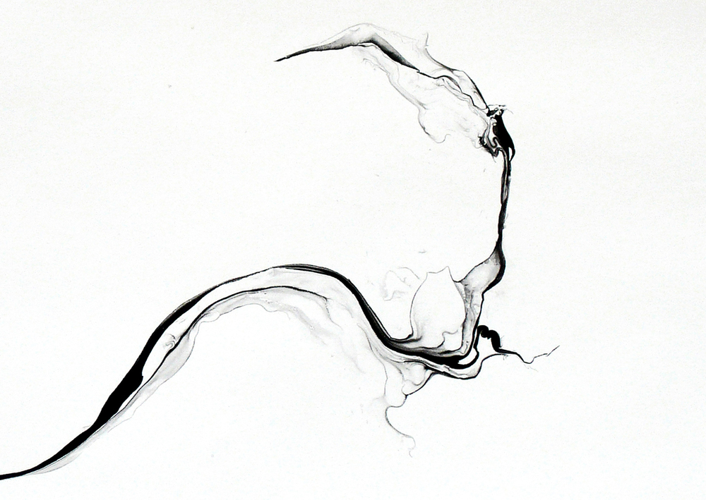 turbulences/ phuyu (close-up), 2014, ink on paper, 62,5 x 92cm