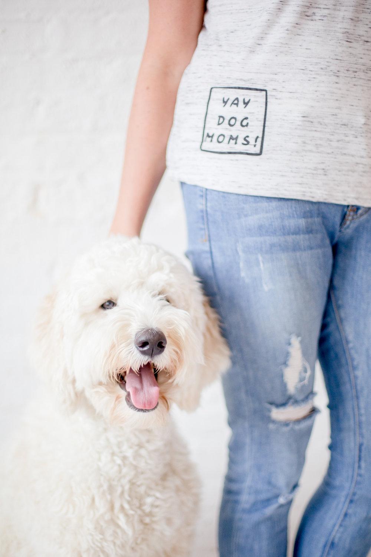 YAY dog moms website-47.jpg