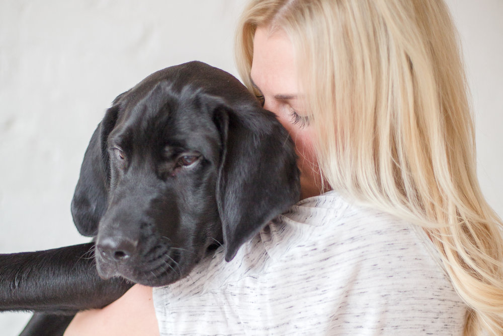 YAY dog moms website-103.jpg