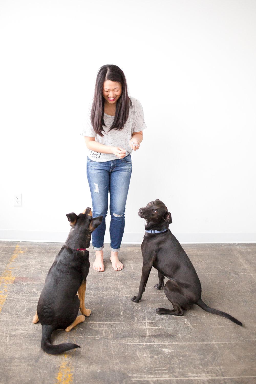 YAY dog moms website-269.jpg