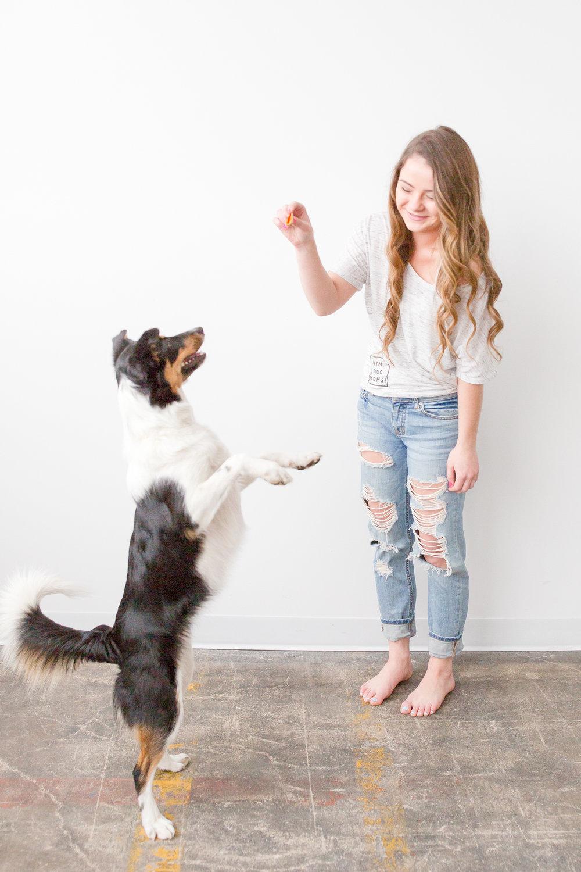YAY dog moms website-410.jpg