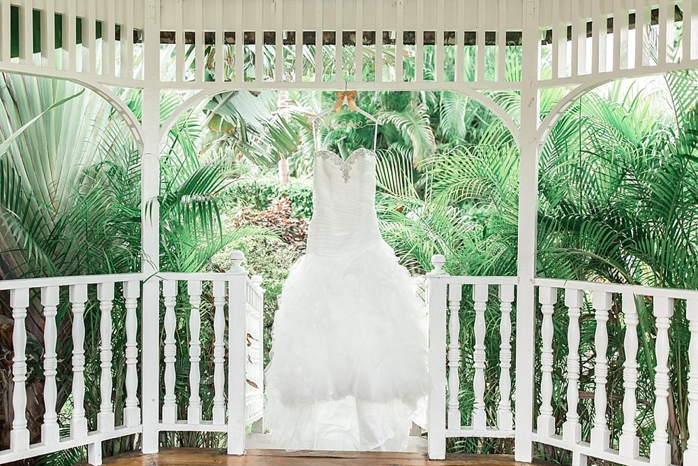 Jamaica Wedding Photographer_0001.jpg
