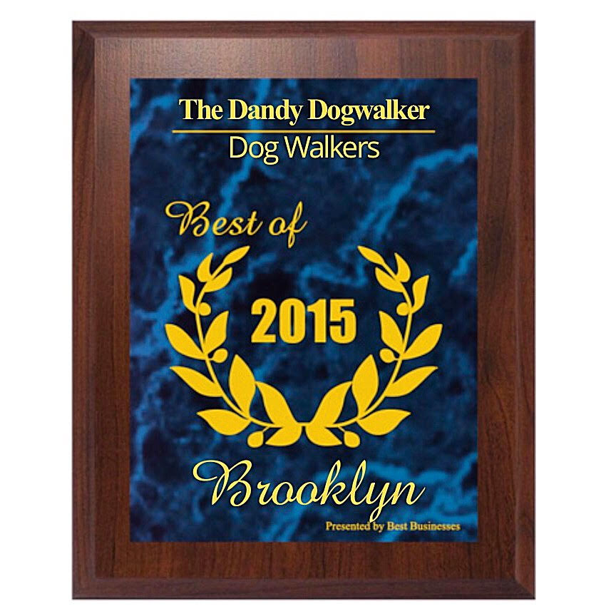 2015 Best Business of Brooklyn Award_Dog Walkers (2015).jpg