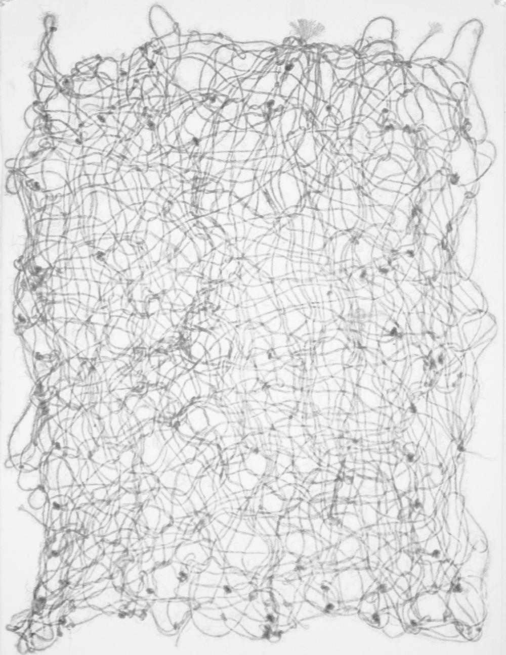 Study 02 (rope)