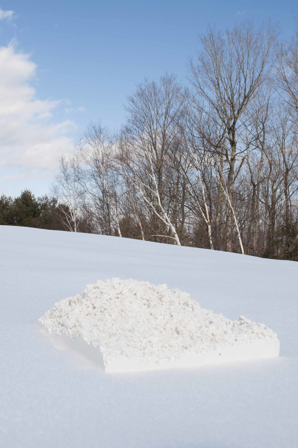 Snow Study 01