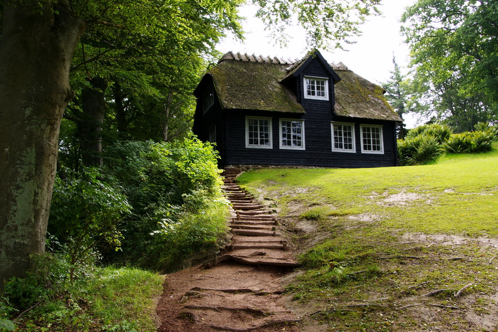 Black-wood-house.jpg