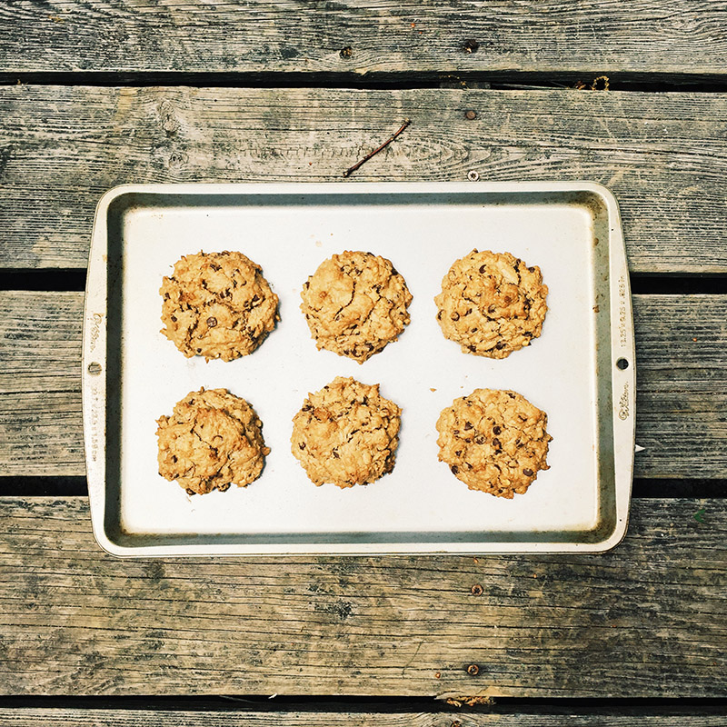 peanut butter & chocolate oatmeal cookies that do not taste vegan (but they totally are)