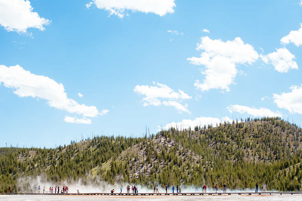 amber_byrne_mahoney_collective_quarterly_magazine_print_travel_lifestyle_montant_yellowstone_national_park_010.jpg