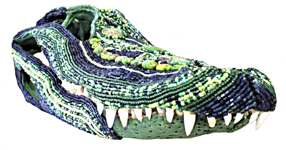 gator-3.jpg