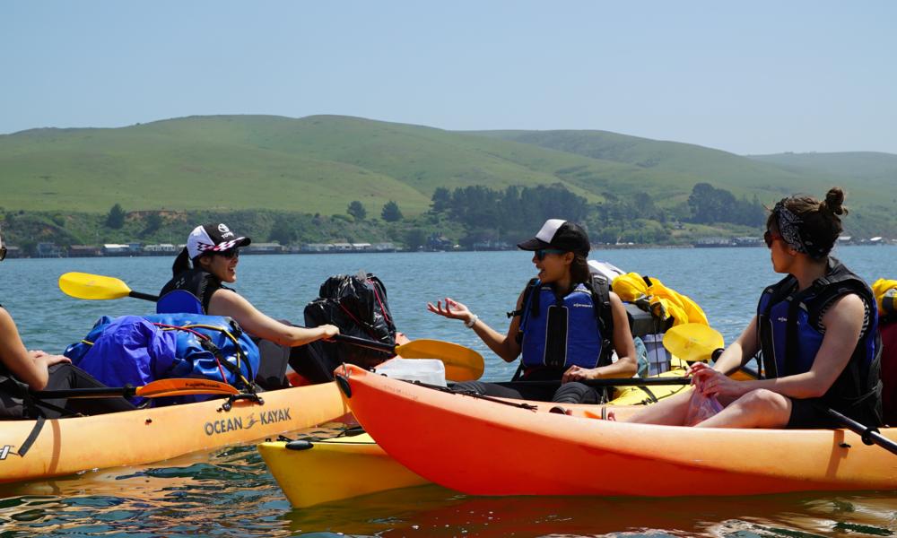 Kayak Camping 1.png