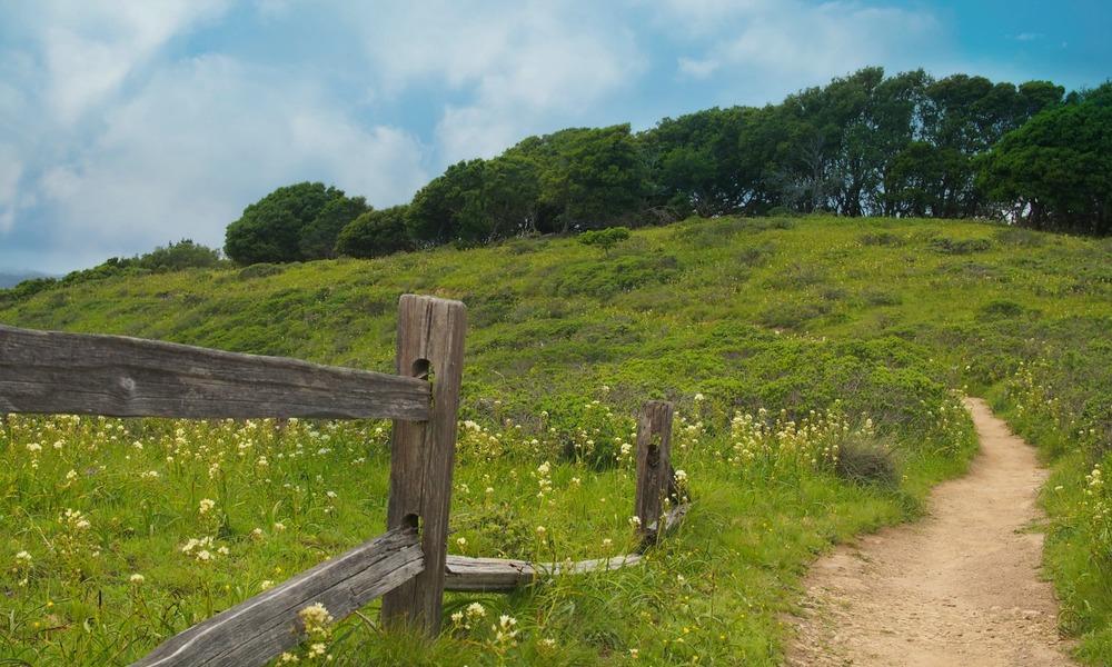 Angel Island 2.jpg
