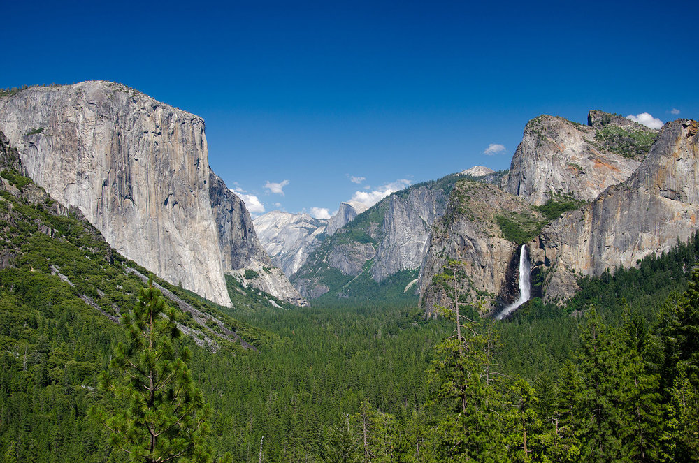 Cold-Forest-Glacier-Point-High-Mountains-Mountain-1846895.jpg