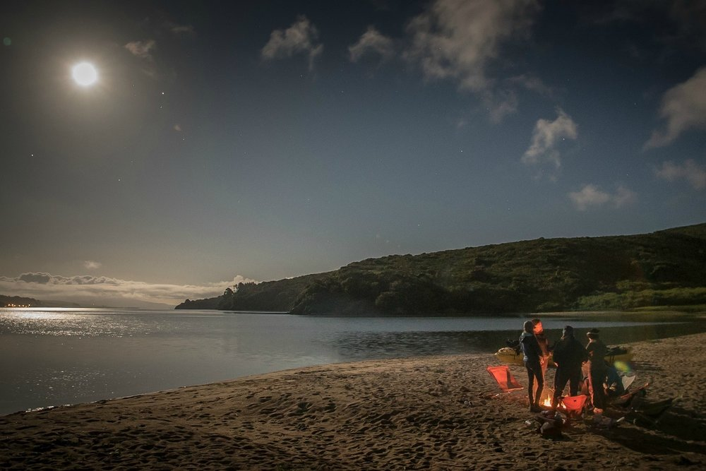 Kayak Camping - August 3-4See the Bioluminescence!