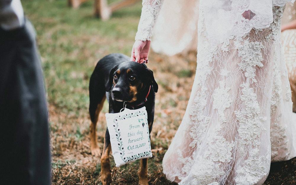 Wedding-Photographer-Moments-10.jpg