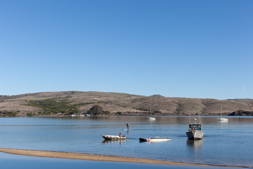 Salvage, Tomales Bay.