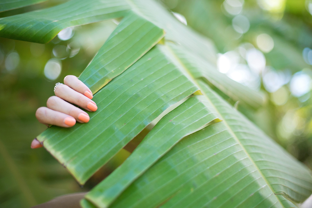 Palm Frond Plant and Summer Nail polish