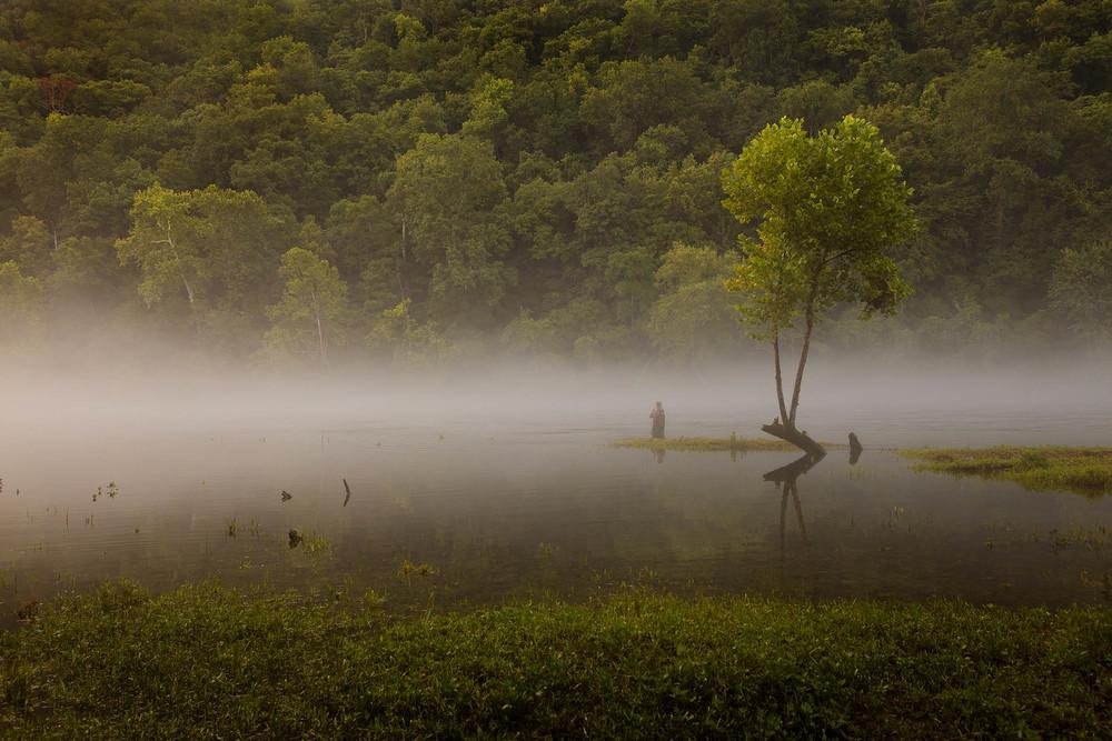 Lake Taneycomo I Missouri