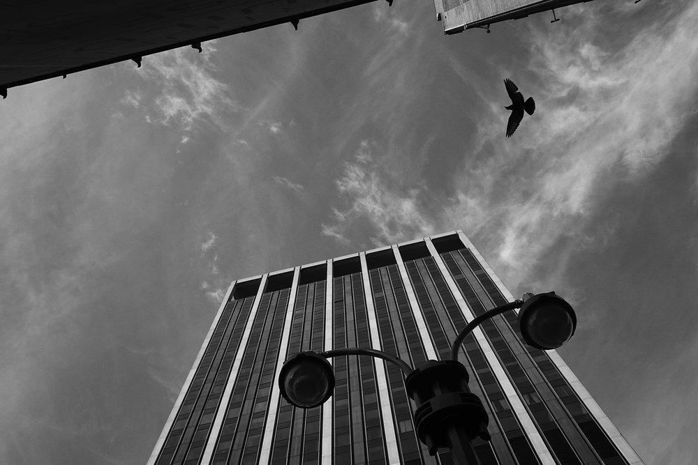 New York City I  September 11, 2016